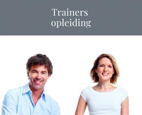 Frame Bavel trainers