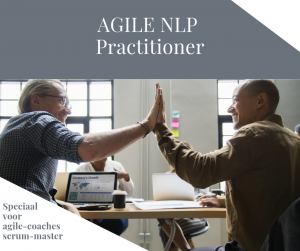 Agile NLP Practitioner