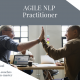 Agile NLP Practitioner